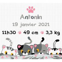 Kit point de croix - Princesse - Petits chats