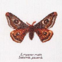 Kit point de croix - Théa Gouverneur - Papillon empereur