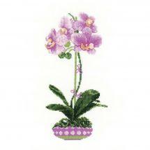 Kit point de croix - Riolis - Orchidée lilas