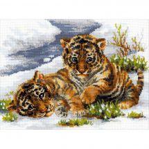 Kit point de croix - Riolis - Les tigres
