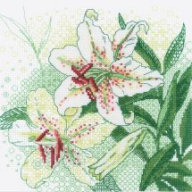 Kit point de croix - Riolis - Lys blancs