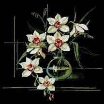 Kit point de croix - Riolis - Orchidée blanche