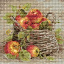 Kit de broderie Diamant - Riolis - Pomme mûres