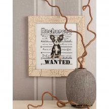 Fiche Point de Croix - Isabelle Haccourt Vautier - I want a Chihuaha