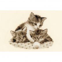 Kit point de croix - Vervaco - Trois petits chatons