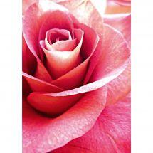 Kit de broderie Diamant - Wizardi - Rose rose