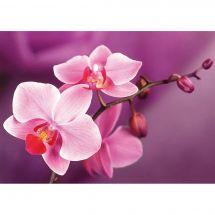 Kit de broderie Diamant - Wizardi - Branche d'orchidées