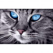 Kit de broderie Diamant - Wizardi - Chat aux yeux bleus