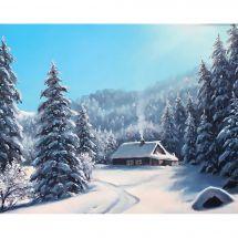 Kit de broderie Diamant - Wizardi - Jour d'hiver
