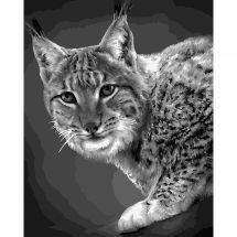 Kit de peinture par numéro - Wizardi - Lynx