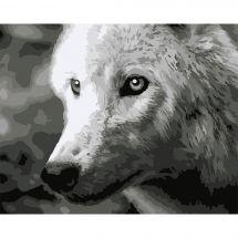 Kit de peinture par numéro - Wizardi - Loup blanc