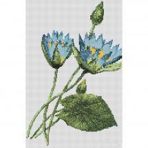 Kit point de croix - Yumatex - Les lotus bleus